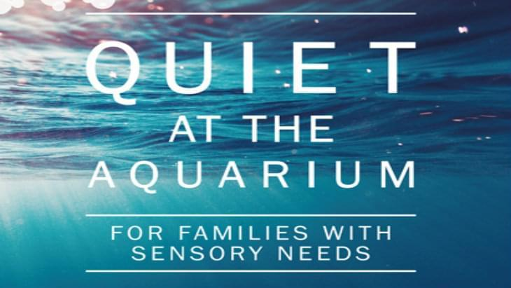 aw-032016-ah-nma-16-1732-quiet-at-the-aquarium-banner12