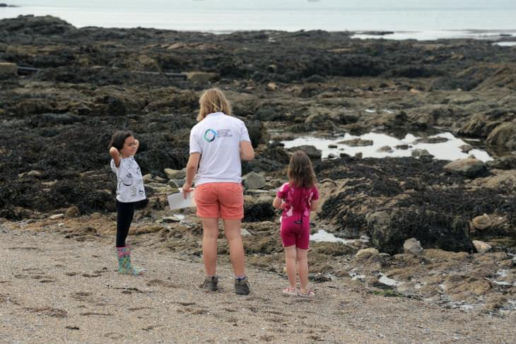 Rockpooling with kids