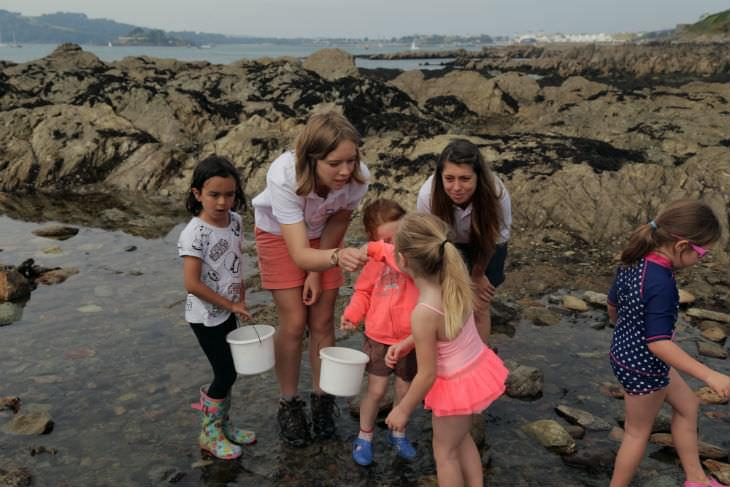 Rockpooling in plymouth
