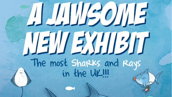 blog-header-jawsome