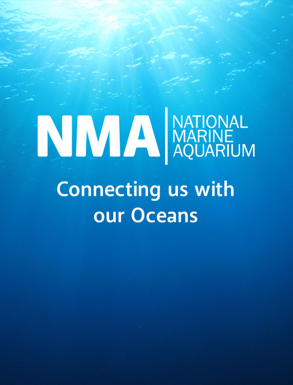 NMA - Connecting us with our oceans