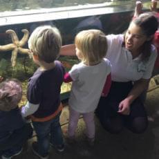 Early Years aquarium school programs for reception
