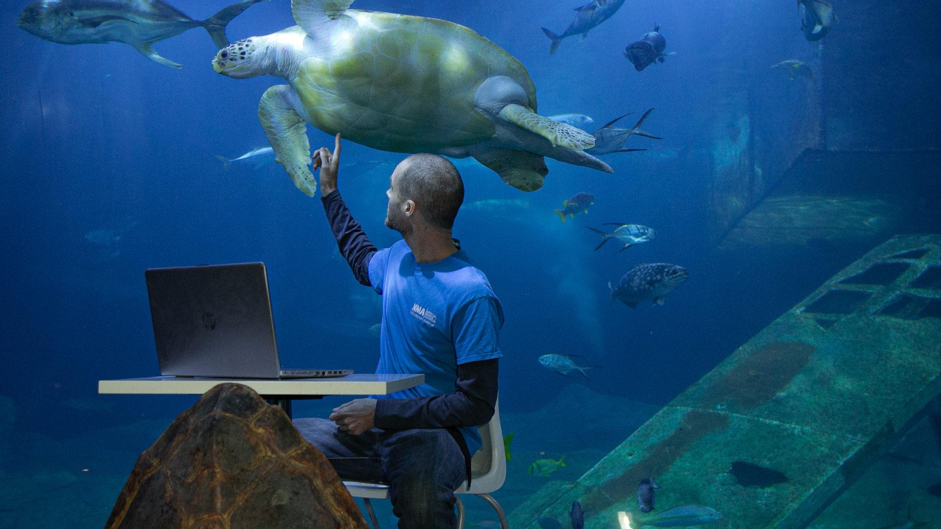 teacher with turtle schools