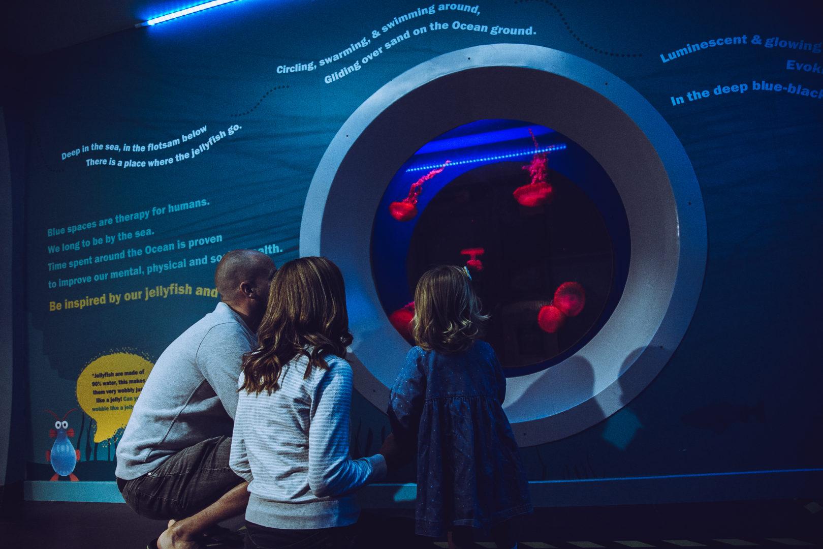 National Aquarium Quiet Event