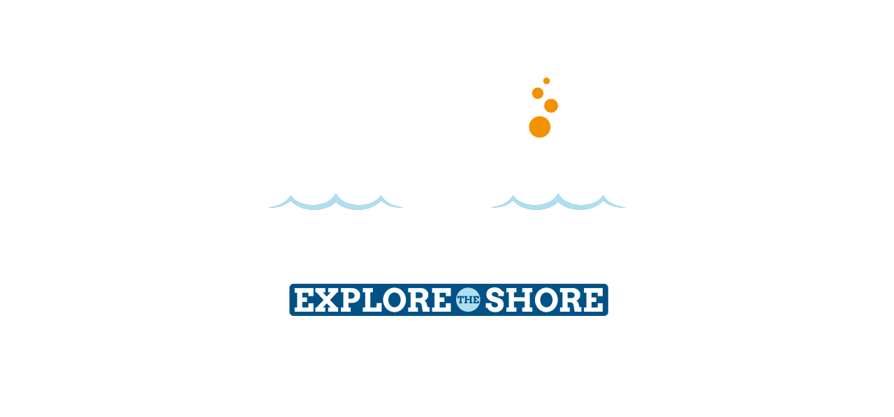 Sea the difference