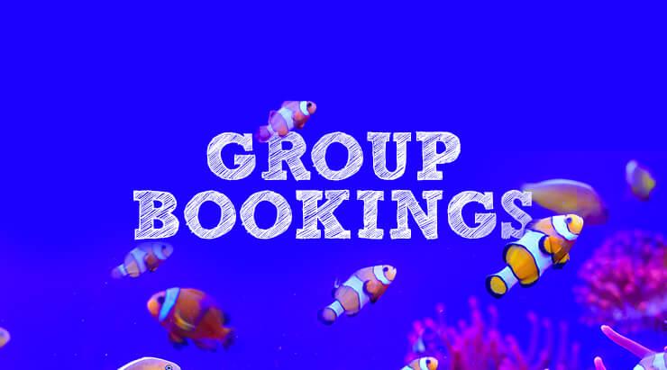 3c5937bd6e Group Bookings - National Marine Aquarium