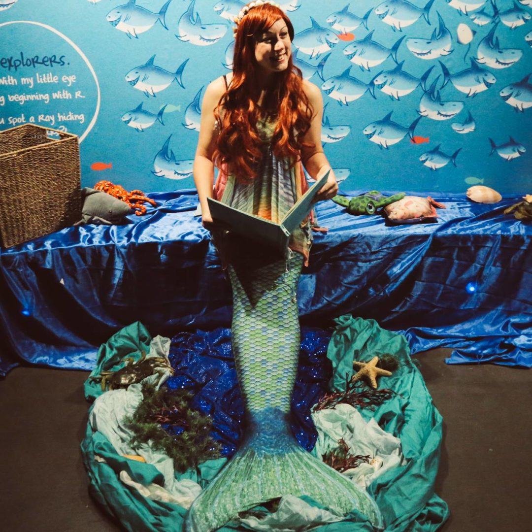 mermaid aquarium